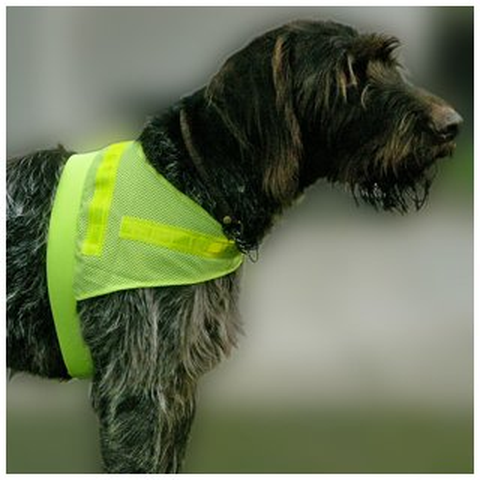 "Hunde-Sicherheitsweste ""Scotchlite"""